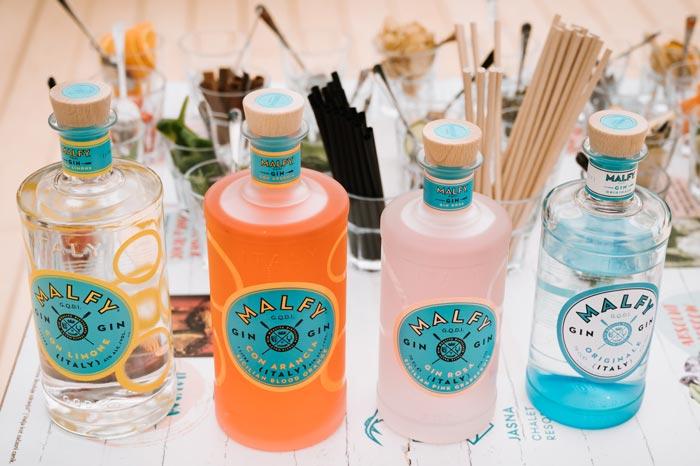 Gin in tonic delavnice na Jasni